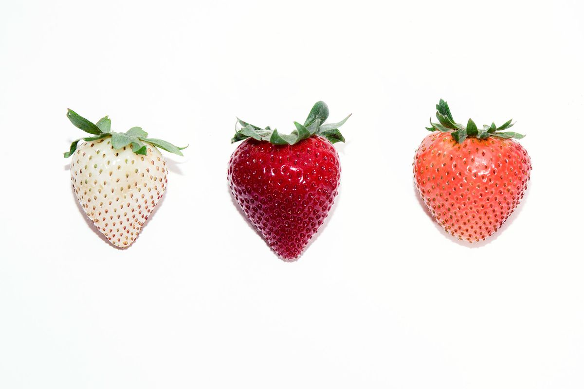 Strawberry Season In Vienna