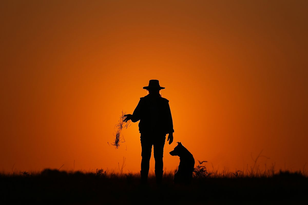 hight resolution of farmer leeanne oldfield and her dog jett at her farm in wandandian new south wales australia