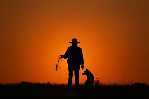 small resolution of farmer leeanne oldfield and her dog jett at her farm in wandandian new south wales australia