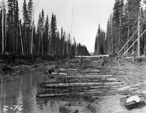 The 341st Engineer Regiment at work on the Alaska Highway around 1942.