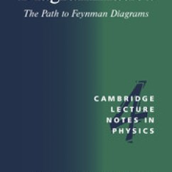 Feynman Diagram Techniques In Condensed Matter Physics Wiring Thermostat Diagrammatica Path Diagrams Theoretical And The To