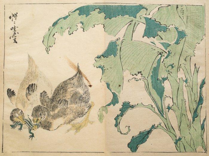 Original woodblock print - Kawanabe Kyosai (1831-1889) - Twee jonge eenden en een salamander. - 1881 (Meiji 14) - Japan - Catawiki