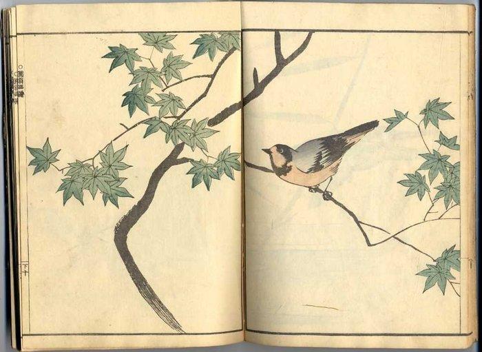 """Book, Original woodblock print - Maruyama Okyo (1733-1795) - """"Okyo gafu"""" 應舉畵譜 (Album peintures d'Okyo), vol 'Shita' 下 (3) - Japan - 1893"""