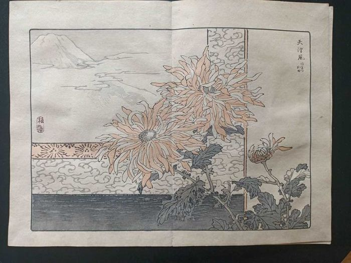 """Book, Original woodblock print - Kono Bairei (1844-1895) - Vol 1 """"Bairei kiku hyakushu"""" 梅嶺菊百種 (One Hundred Chrysanthemums by Bairei), vol 'ichi' 天 (Sky) - Japan - 1891"""