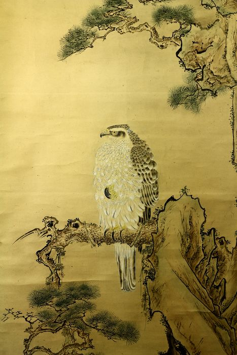 Hanging scroll - Paper - Hawk on pine tree - with signature and seal Miyazaki Genyu '宮崎源幽' - Japan - ca 1903(Meiji) - Catawiki