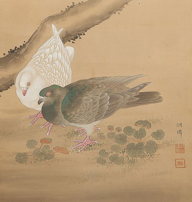 Hanging scroll (1) - Bone, Silk, Wood - Fine pair of pidgeons, marked - Japan - late 19th / early 20th century