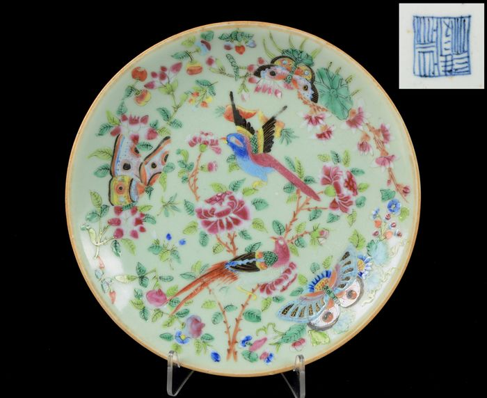 Plate - Celadon ground, Famille Rose - Porcelain - Birds, butterflies, peonia and other flowers - Perfect condition - China - 19th century