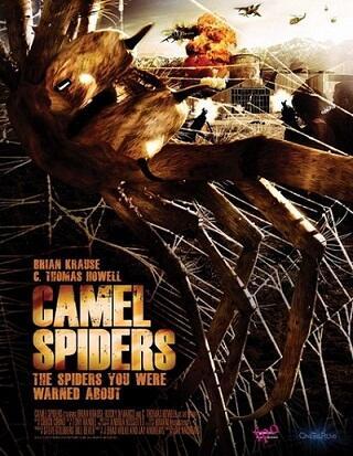 Camel Spiders  Angriff Der Monsterspinnen  Bild 2 Von 3