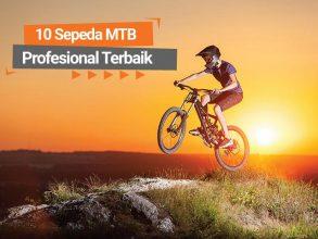 10 Sepeda MTB Profesional Terbaik
