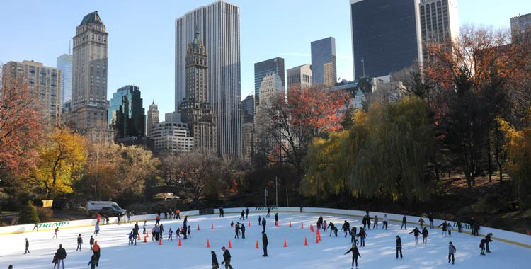 Image result for wollman rink