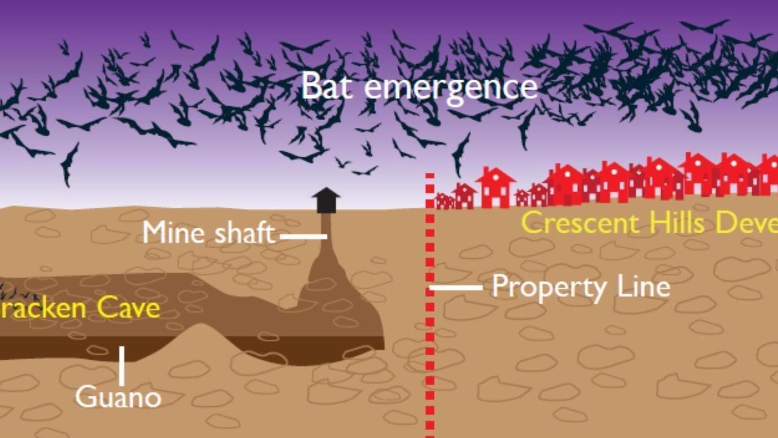 Petition San Antonio Save Bracken Bat Cave Stop