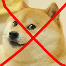 petition make the doge