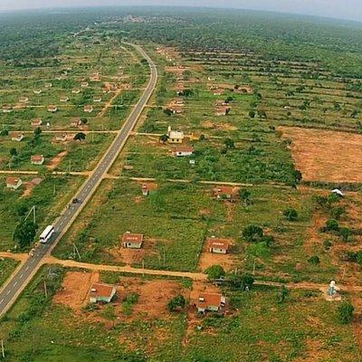 Petition Stop Deforestation In Wilpattu Forest Complex