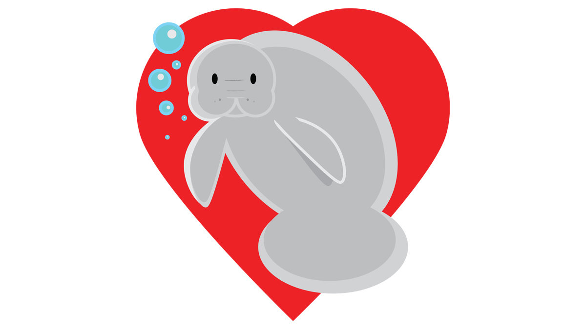 join tampa s lowry park zoo to create a manatee emoji  [ 1200 x 675 Pixel ]