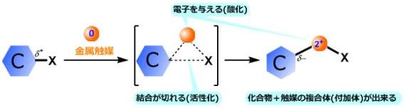 CC_mech_3