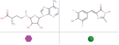 S-アデノシルメチオニン / 研究チームが独自に開発した蛍光試薬