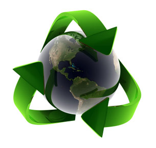 sustainability_studies