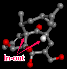 ingenol_synth_2