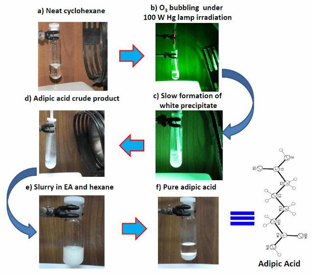 光照射下のオゾン酸化でアジピン酸をつくる方法(原著論文より抜粋)