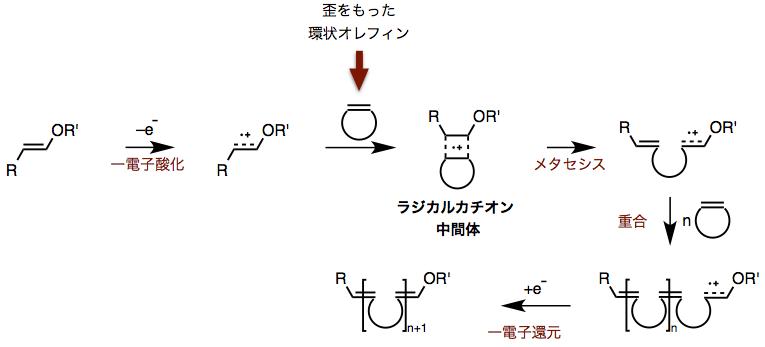 図3.金属触媒を用いない開環メタセシス重合反応の開発戦略 (出典;論文より改変)