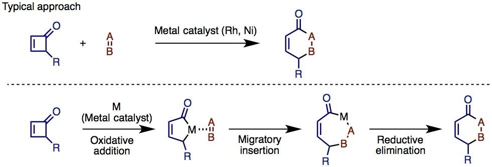 図1 遷移金属触媒によるシクロブテノンのC–C結合活性化(出典:論文より改変)