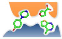 Figure 1. ハイスループットスクリーニング法と比較すると、より小さなフラグメントではタンパク質の構造にそって結合すると考えられる