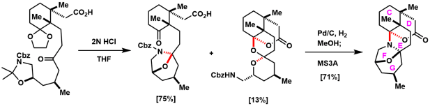 norzoanthamine_6