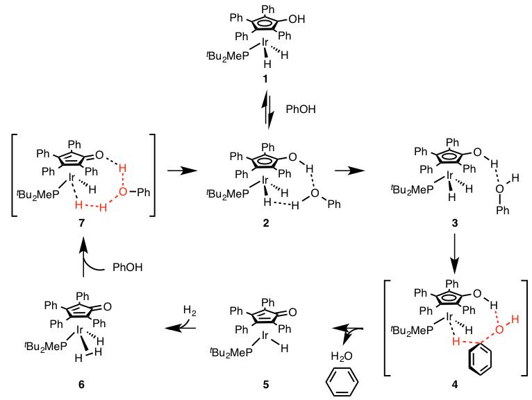 図5. イリジウム触媒を用いたアレノール誘導体の水素化分解反応の推定反応機構