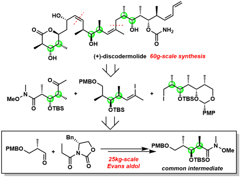 図6:ノバルティスプロセスチームによるDiscodermolideの大スケール合成経路