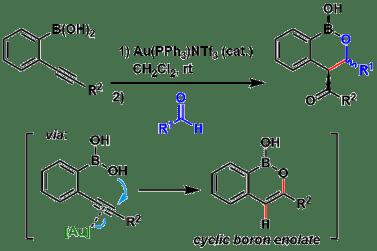 図3: Sheppardらによるアルキンへの分子内ボロン酸付加→アルドール反応