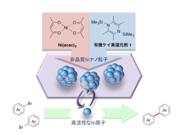 図1:非晶質Niナノ粒子触媒の合成とハロゲン化アリールの還元的カップリング反応