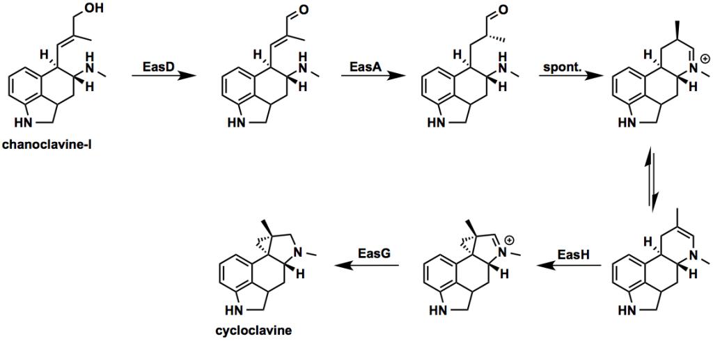 cycloclavine_scheme