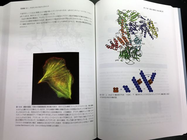 strucutural_biology_textbook_1