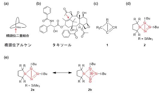 図1.(a)橋頭位アルケンの模式図. (b)橋頭位アルケン部位を有するタキソール. (c) ビシクロ[1.1.0]ブト-1,(2)-エン1. (d)テトラシラビシクロ[1.1.0]ブト-1,(2)-エン2. (e)化合物2の共鳴構造.