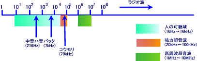 図1 音響スペクトル