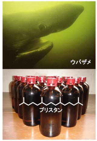 図 ウバザメから採れる天然物プリスタンのプロセス合成