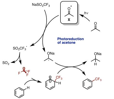 図5 想定反応機構
