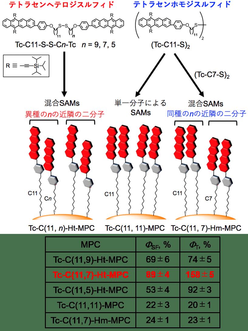 Fig1_Sakai