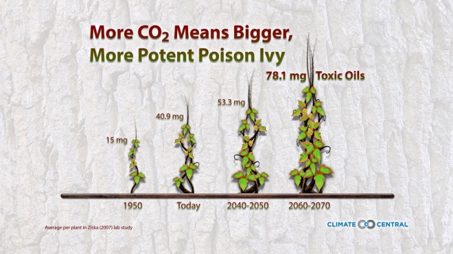 Poison Ivy In A Warming World Climate Central