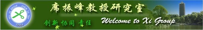 Xi group