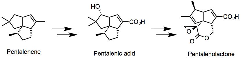 Pentalenene_structure