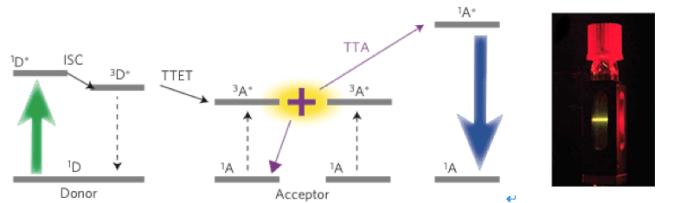 图3 左:TTA的机理;右:TTA-UC溶液,红色光束上转化为黄色