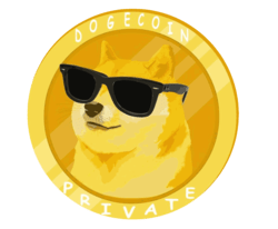 DogeCoin Private (DOGP) price, marketcap, chart, and info ...