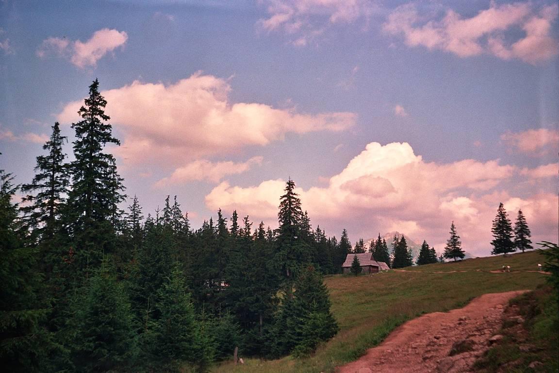 1993 Tatra Mountains (LOMO Smena 8M) — yerzmyey · Lomography