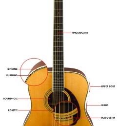 acoustic guitar diagram [ 768 x 1471 Pixel ]