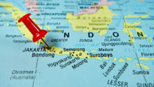 Ivermectin Games in Indonesia—Power Politics, Vaccine Politics & State Usurpation
