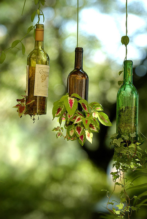 DIY Wine Bottle Hanging Planters  Curbly