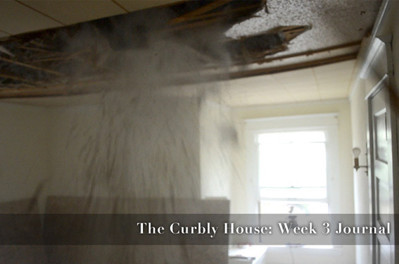 The Curbly House: Week Three Journal (VIDEO)