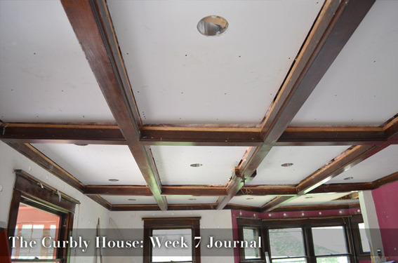 Curbly House Week 7 Video Journal - plumbing and sheetrock!