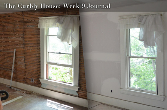Curbly House: Week 9 Journal